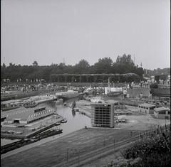 Madurodm 1975