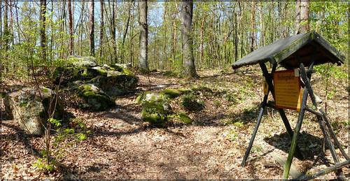 Die Heidensteine im Golker Wald