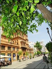 Seville (Spain)