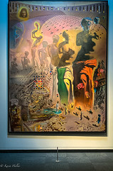 The Hallucinogenic Toreador-2547