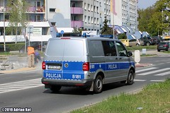 Volkswagen Transporter T6 Policja B181