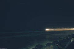 bioluminescent pier.