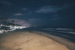 bioluminescent waves.