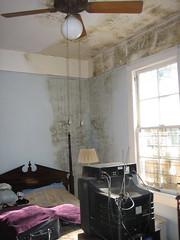 Moldy Bedroom Carrollton New Orleans after Katrina