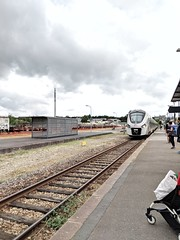 Flers Station - Photo of La Selle-la-Forge