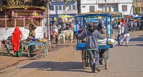 Rajasthan Street Vendor DSC_0640