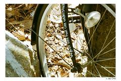 Abandoned Bicycle Closed Shot