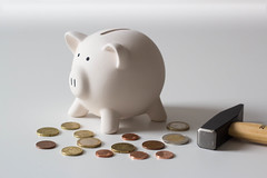 Close Up Photo of Piggy Bank with Hammer and Coins around it on White Background