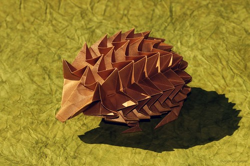 Origami Hedgehog (John Richardson)