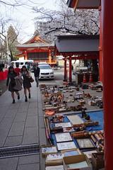 花園神社骨董市(Flea market in Hanazono shrine)