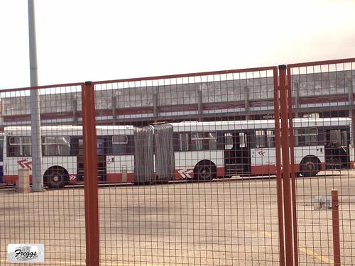 (ex STCP 1023) MoveAveiro 69 Volvo B10MA-55 Camo - Aveiro