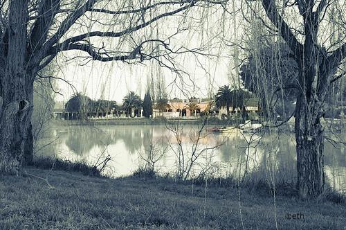 Parc Naturel de Camargue (I)
