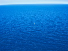 Lonely Ship