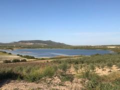 Laguna del Gosque. Martín de la Jara (Sevilla)