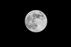 Full (near enough) Moon 6th May 2020