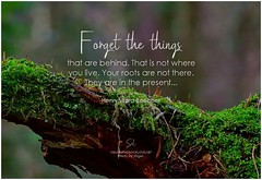 Henry Ward Beecher Forget the things that are behind. That is not where you live. Your roots are not there. They are in the present...
