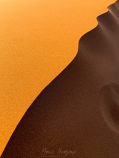 Ridges of the dunes