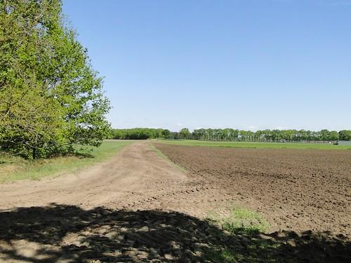 Maarheezerdijk dirt road near Maarheeze