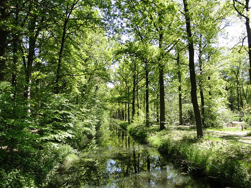Canal in Pan nature reserve