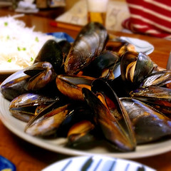Plate of Steamed Mussels