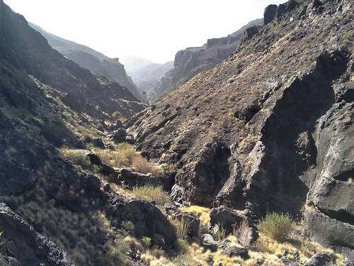 Barranco del Pino Gordo