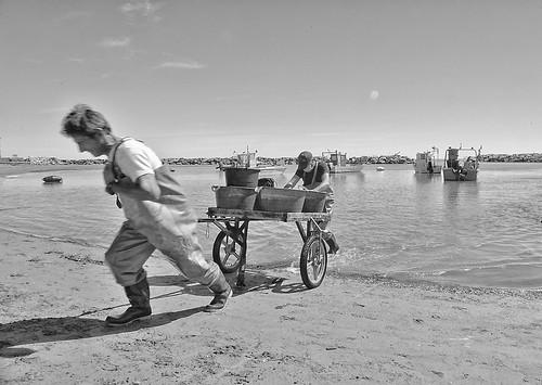 Peppino e Dino. The Fishermen