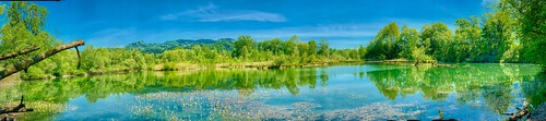 Panorama of a side pocket of the river Inn in spring near Oberaudorf in Bavaria, Germany