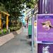 Covid-19 Signage, Hong Kong