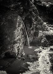 McWay Falls, Big Sur, CA #3 B&W