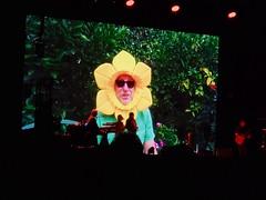 Flower Guy At Jethro Tull Concert