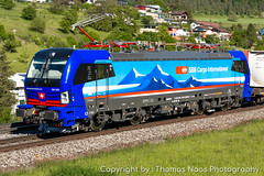 SBB Cargo International, 193 529-5 : Neckar