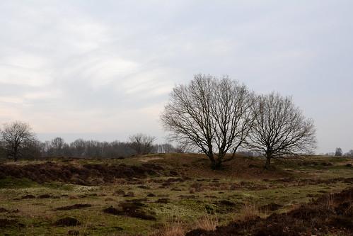 Een oud stukje Drenthe.