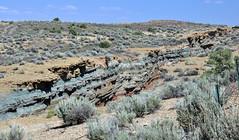 Cowboy Dike (gilsonite dike in the Uinta Formation, Middle Eocene; north of Bonanza, Utah, USA) 4