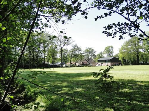 Farm near Achterveld