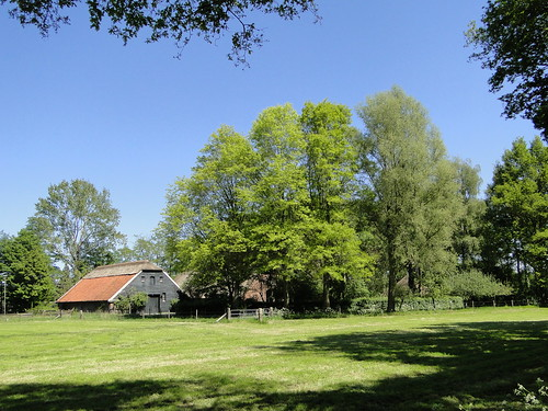 Farm near Achterveld village