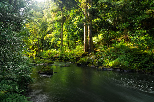 Hātea River, Whangarei, New Zealand