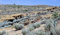 Cowboy Dike (gilsonite dike in the Uinta Formation, Middle Eocene; north of Bonanza, Utah, USA) 3