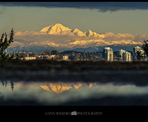 Mount Baker Reflections