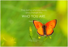 Paulo Coelho Stop being who you were, and change into who you are