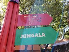 Tigris & Jungala