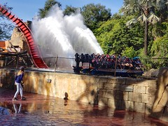 SheiKra Splash (C)
