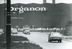 Opel Ascona / Citroën Dyane