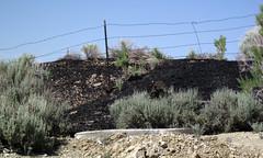 Gilsonite piled up next to Cowboy Dike (north of Bonanza, Utah, USA) 11