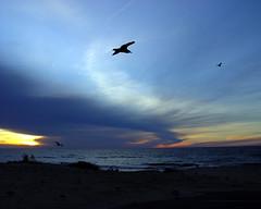 Sunset on the Sunset Coast
