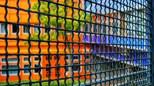 Colours behind the Fence