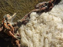 Foam Meets Rust