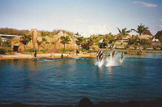Photo 4 of 7 in the Sea World gallery
