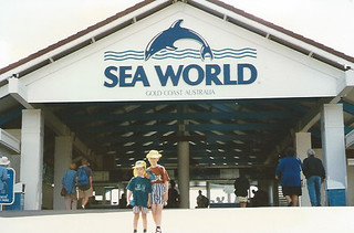 Photo 2 of 7 in the Sea World gallery