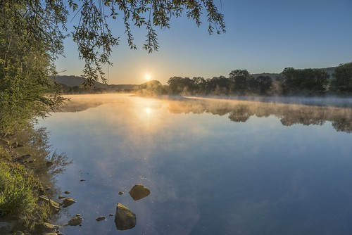 *A morning on the Middle Moselle*