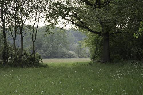 Coulissenlandschap (explored)